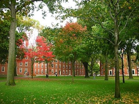 Harvard_Yard,_Dudesleeper_(1).jpg