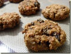 sweet_potato_oatmeal_cookies (300x225)_thumb
