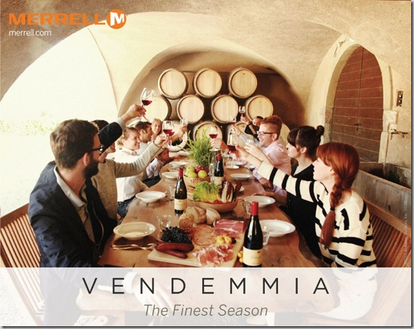 Vendemmia Image (750x594)