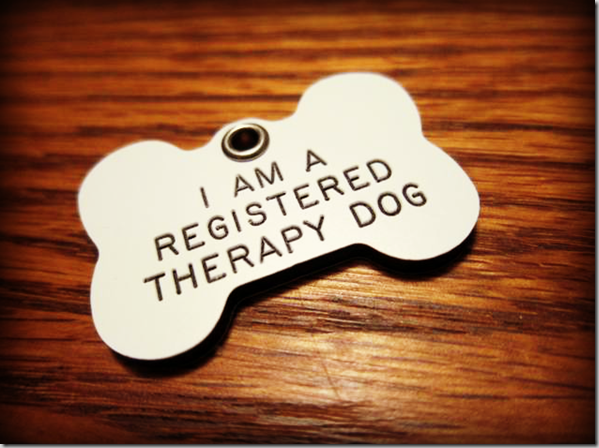 TherapyDogTag