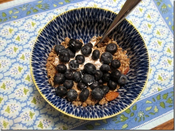 greek-yogurt-with-blueberries-and-pa[1]