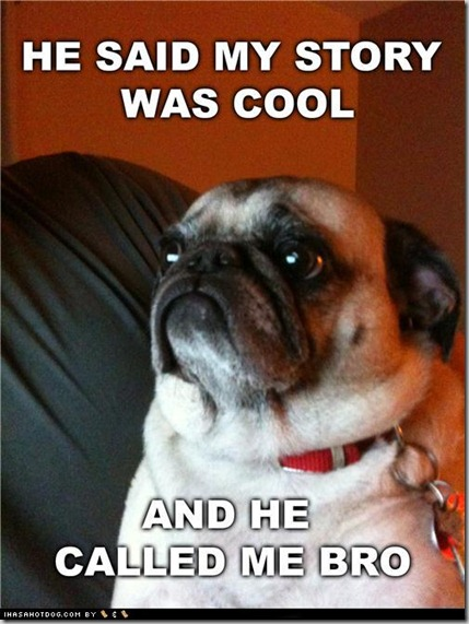 funny-dog-pictures-cool-story-pug