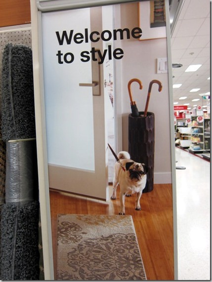 welcome to style target