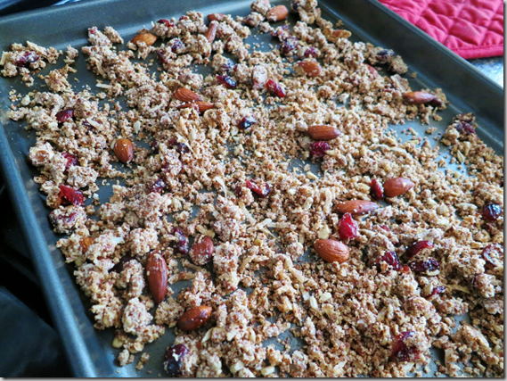 sweet_and_salty_granola_gluten-free