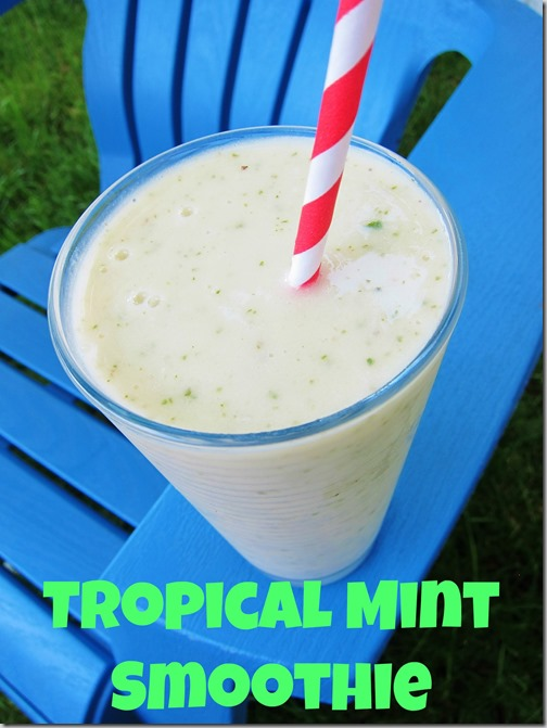 TropicalMintSmoothie