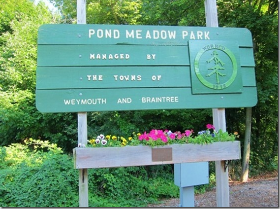 pond_meadow_park