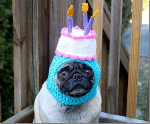 pug_cupcake_hat
