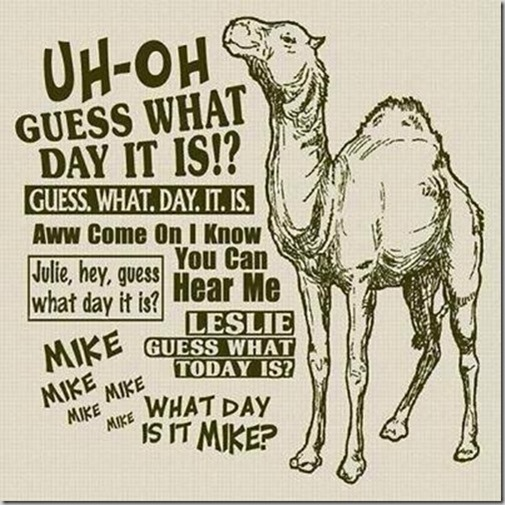 hump-day-camel-geico_thumb2