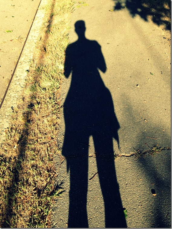 morning running shadow