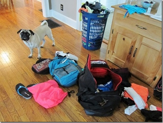 suitcase explosion