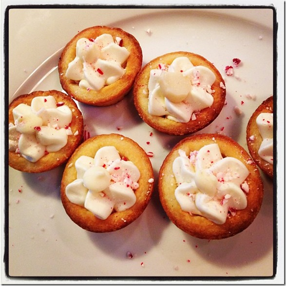 white chocolate peppermint and macademia tartlets