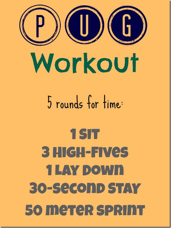 Pug_Workout