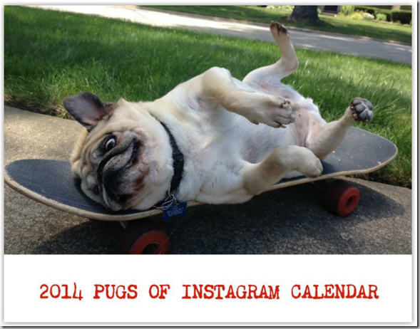 pugs_of_instagram_calendar