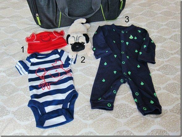 baby bag for hospital  (900x675)