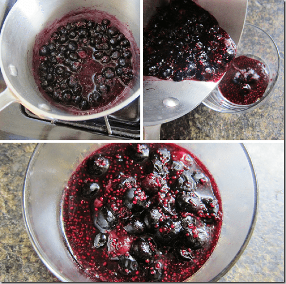 blueberry_chia_seed_pudding_directions