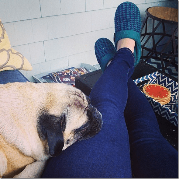 relaxing_with_the_pug_