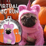 The Virtual Pug Run