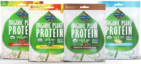 plant-protein-family