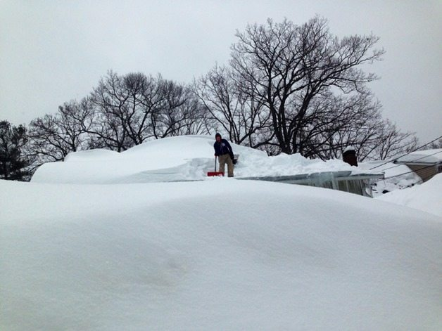 snow2 (800x600)