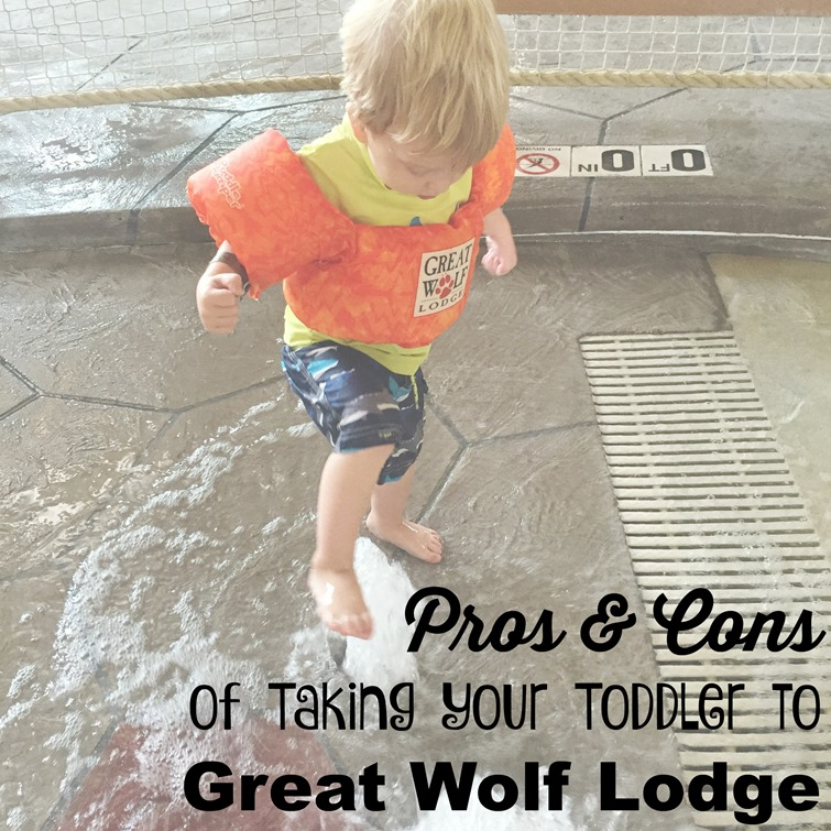 pros and cons of taking your toddler to great wolf lodge