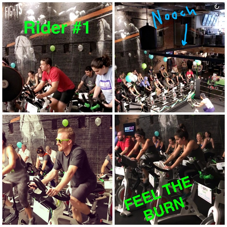 spin4 crohns and colitis cures